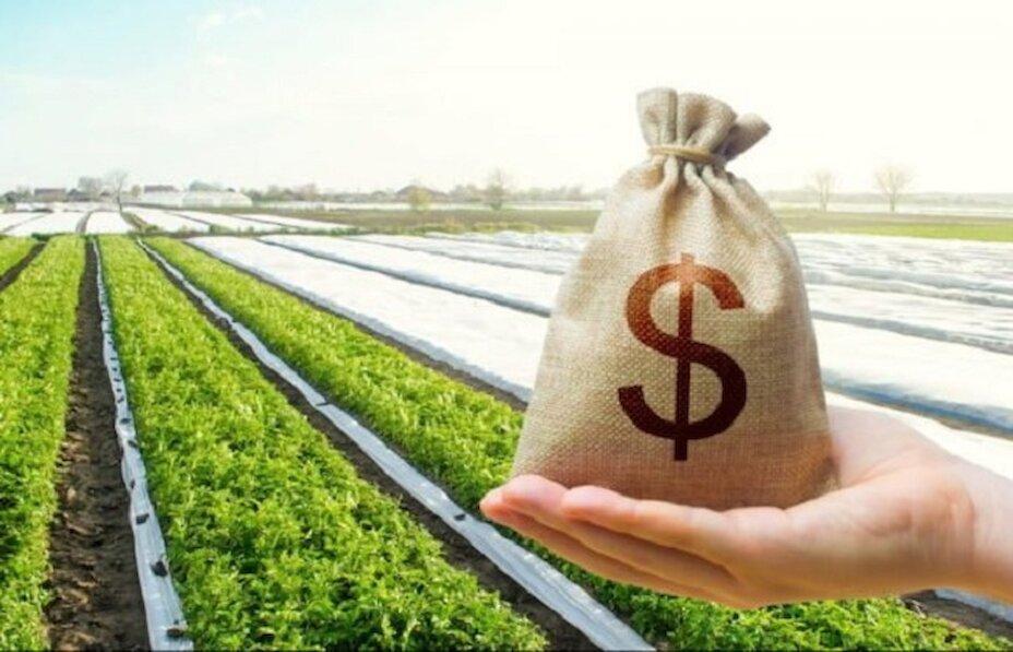 Ціна на землю в Обухівському районі зростатиме