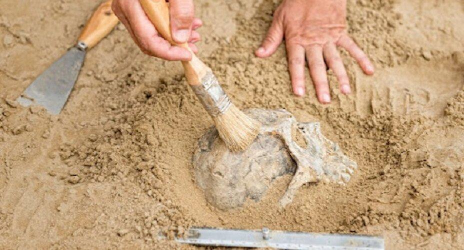 Туристична археологія - частина розвитку туризму на Обухівщині