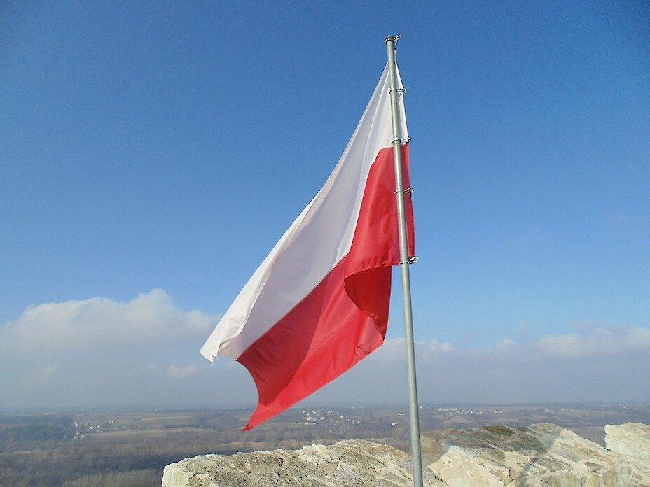 Фірми працевлаштування в Польщі, поради по пошуку агентств