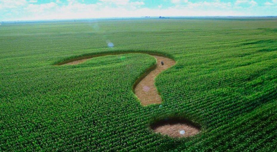 Найдорожчу ціну за один гектар відчуженої землі зафіксовано на Обухівщині